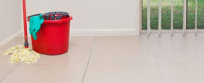 How to clean and maintain ceramic and porcelain floor tiles at home.